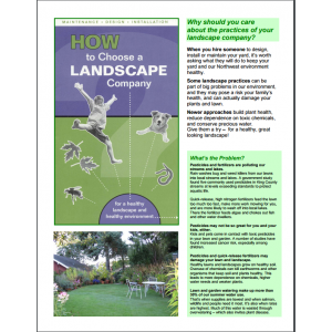 How to Choose a Landscape Company